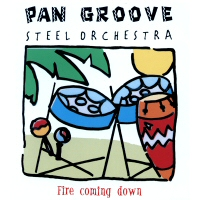 "CD-Cover ""Fire coming down"""
